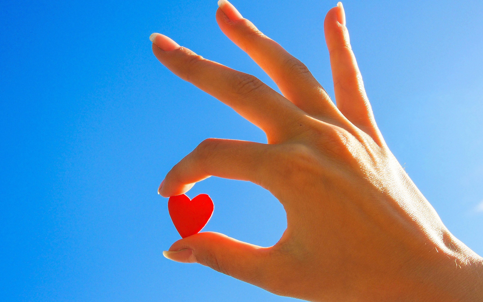 Сердце в ладошках  № 923375 без смс
