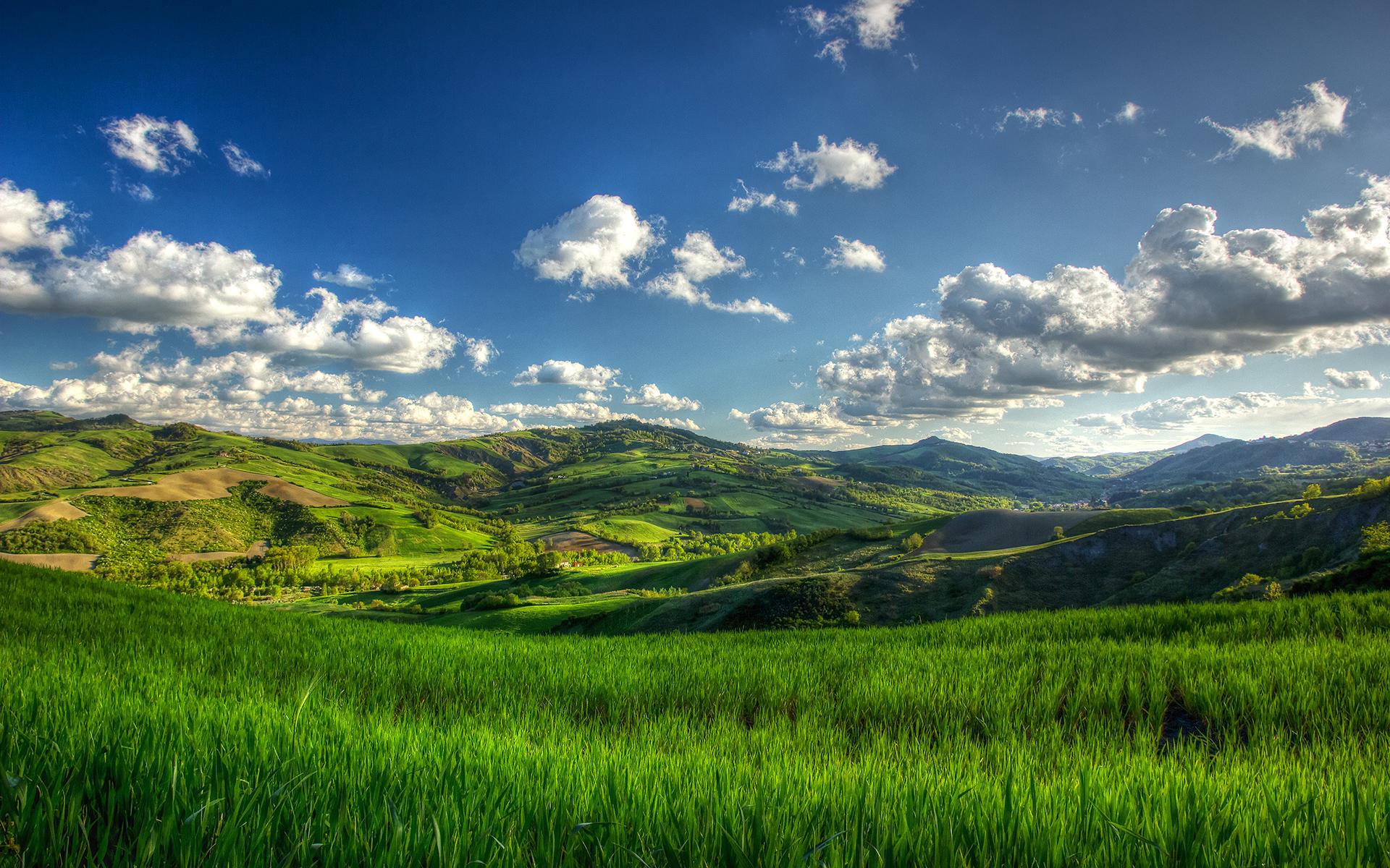 Зеленое поле возле горы  № 1077765 бесплатно