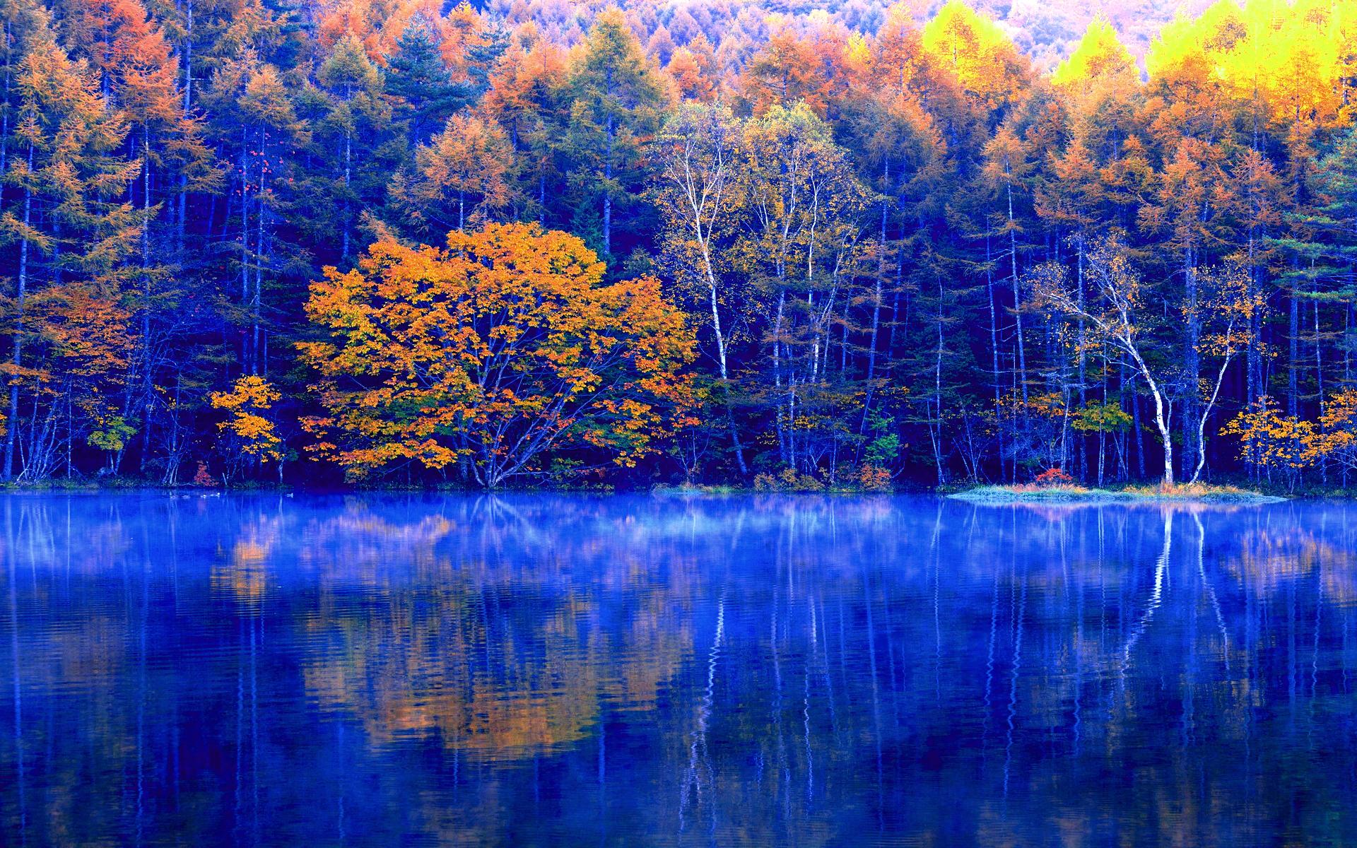 осенний лес у озера  № 254869  скачать