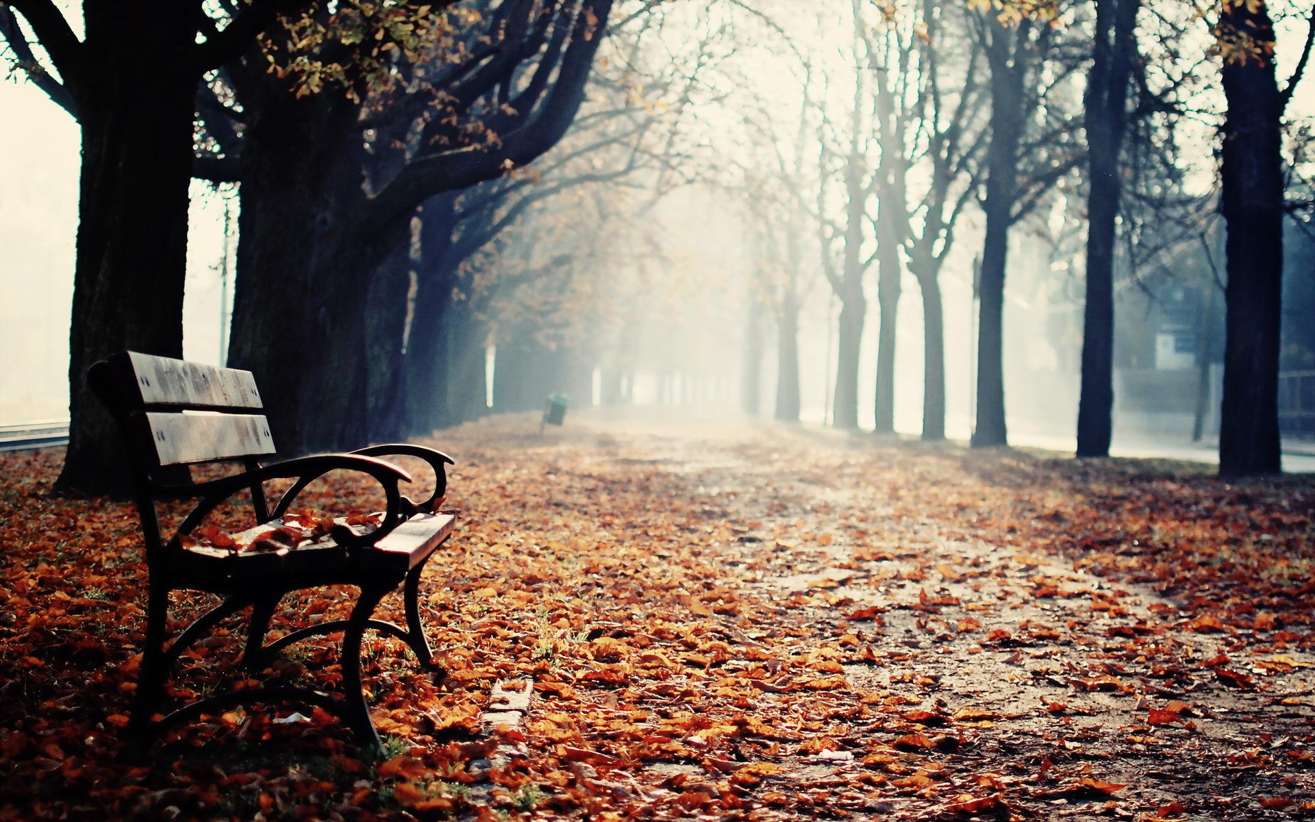 Картинки грустное настроение осень, брату день