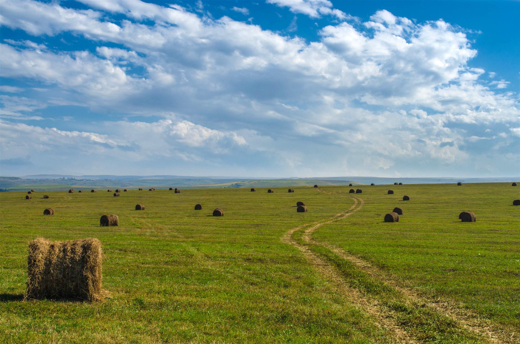 солома поле небо облака straw field the sky clouds  № 1783578 бесплатно