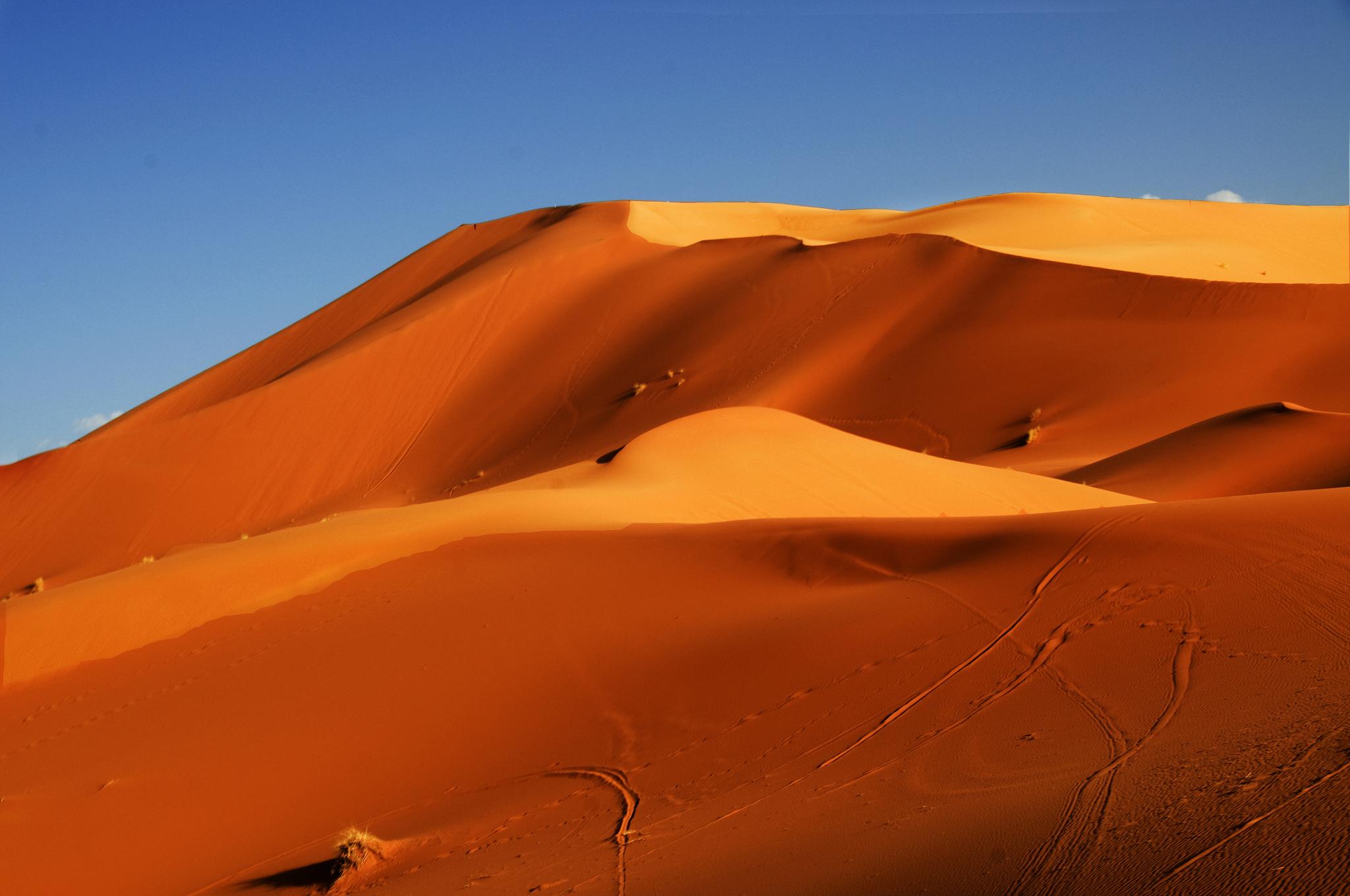 барханы пустыня дюны  № 1291823  скачать