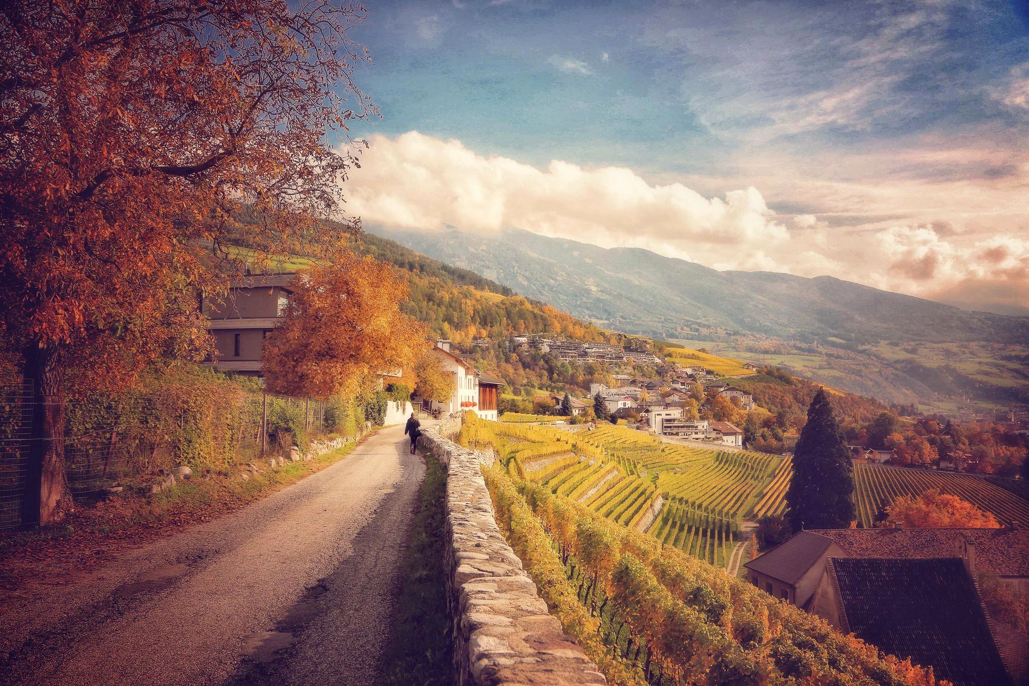 дорога в Италии  № 2221882 бесплатно