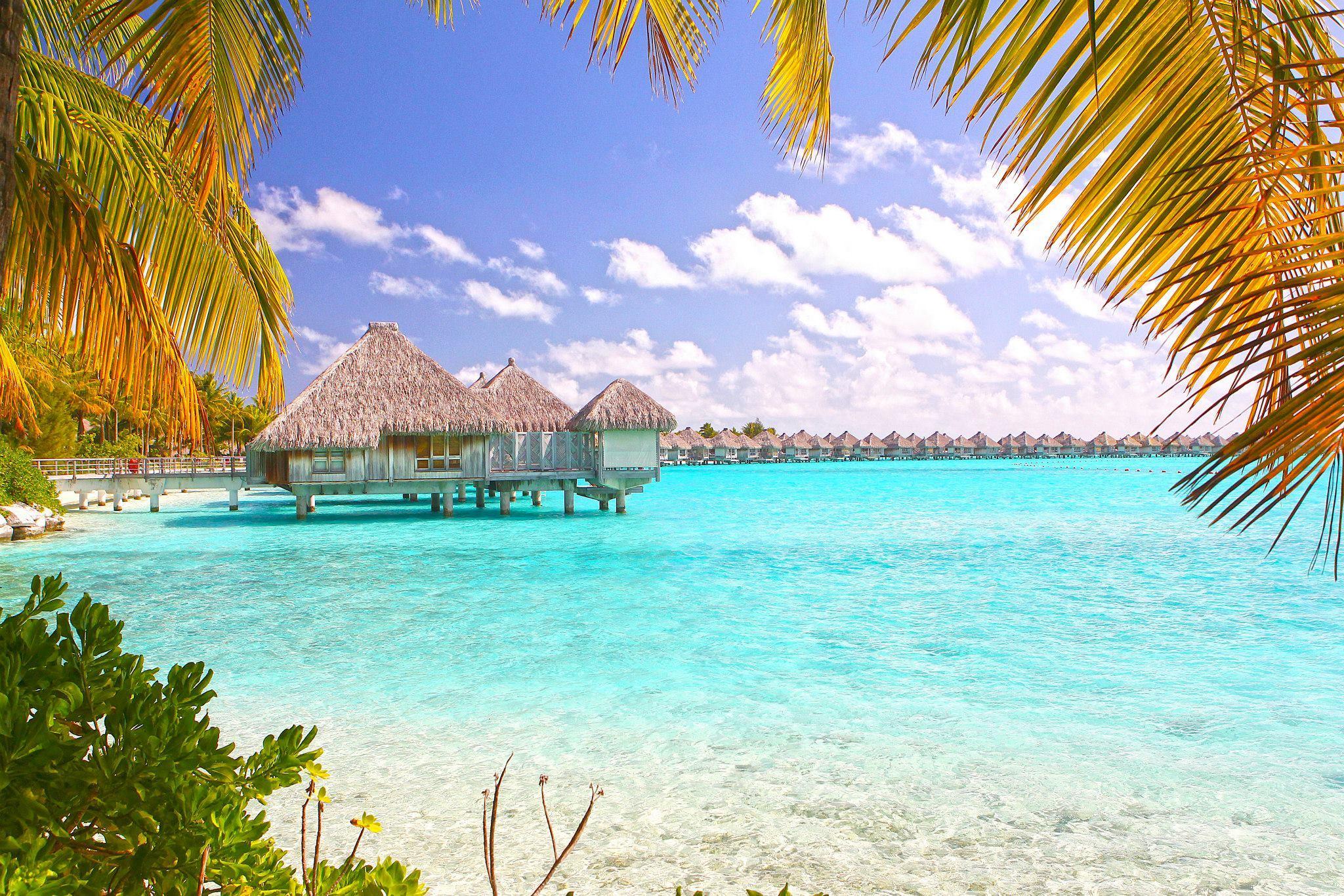New Providence Island, Bahamas  № 1471693 загрузить