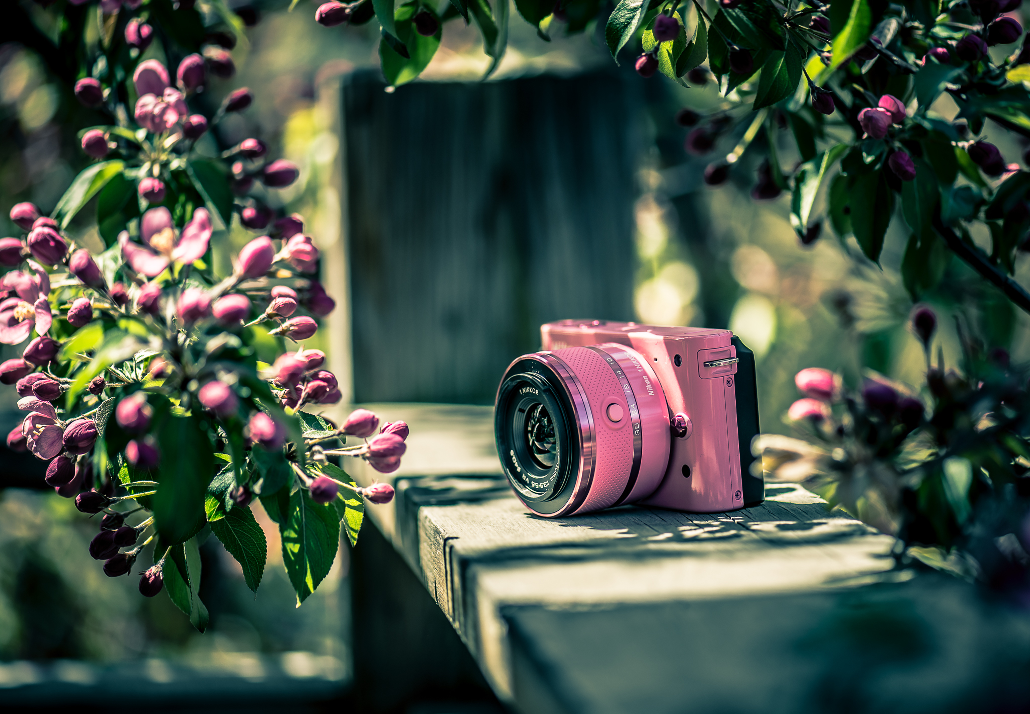 Фотоаппарат Nikon старый  № 3624508  скачать