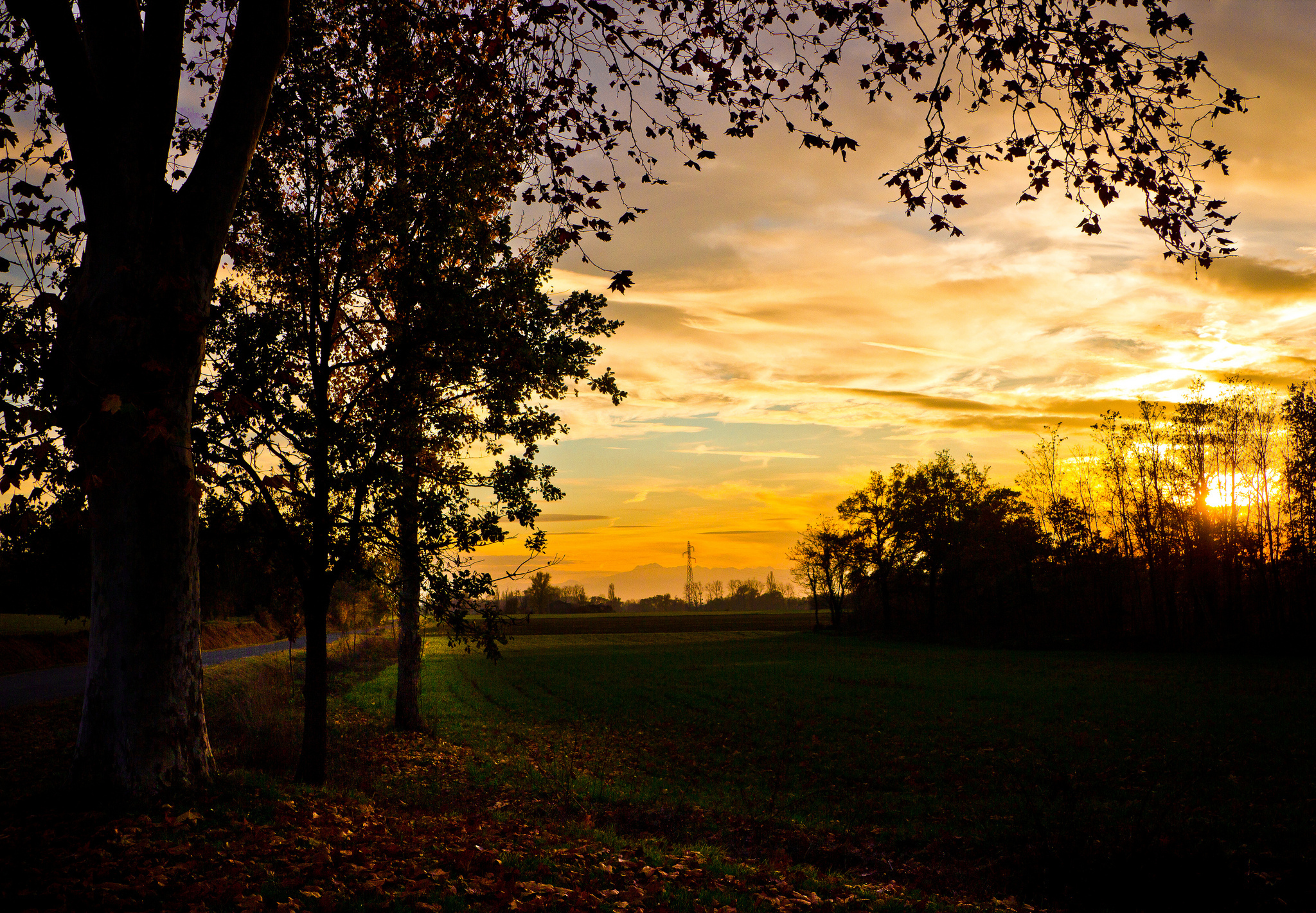 пара закат парк осень  № 1603064 бесплатно
