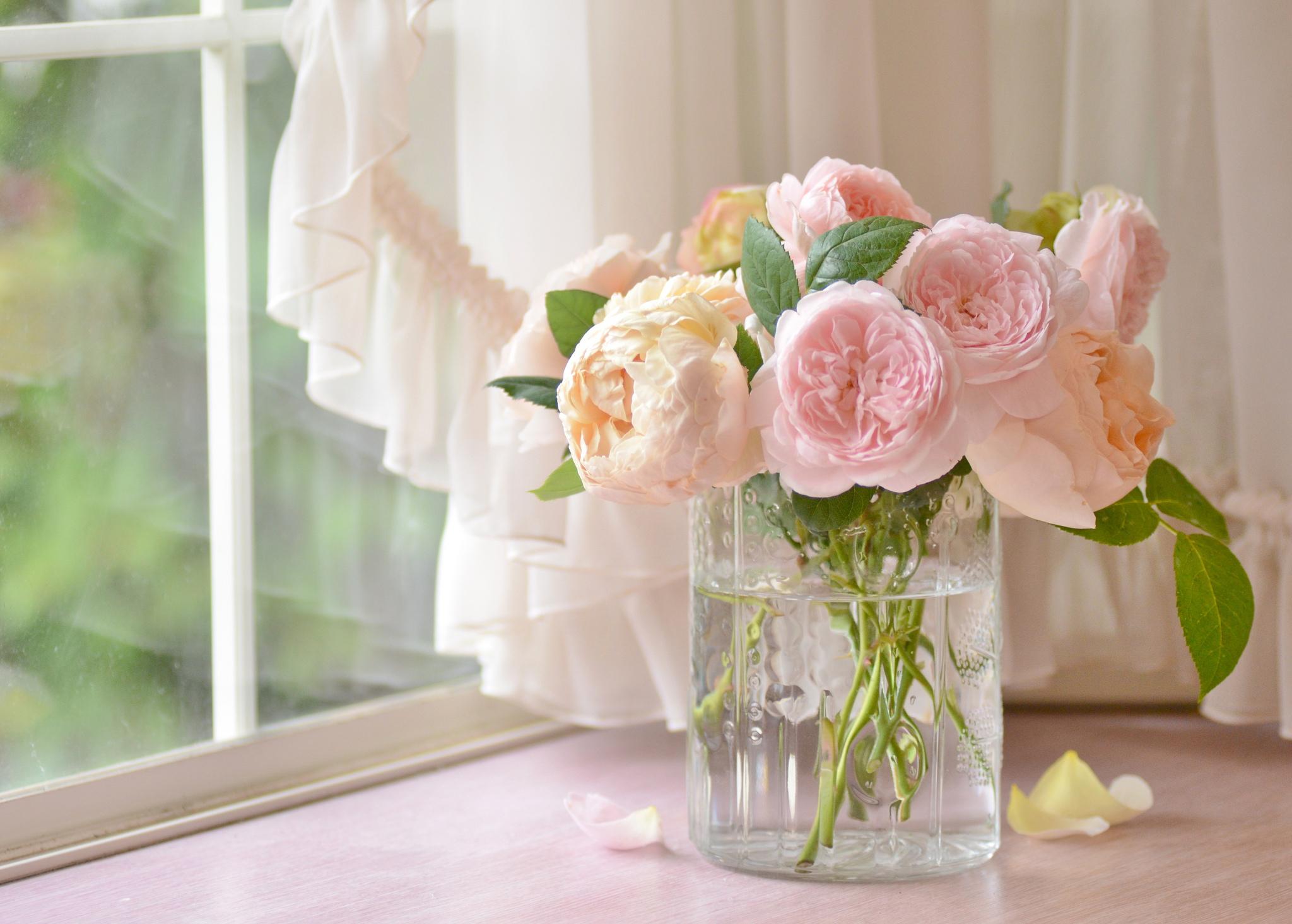 розы цветы ваза  № 1332640 без смс