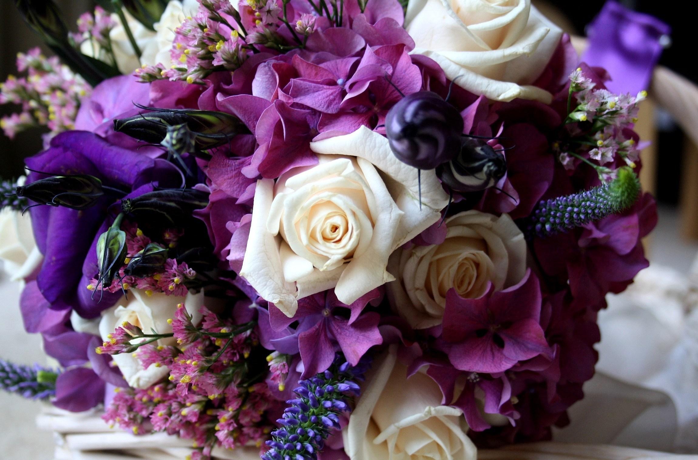 фиолетовые цветы в коробке  № 2541505 бесплатно