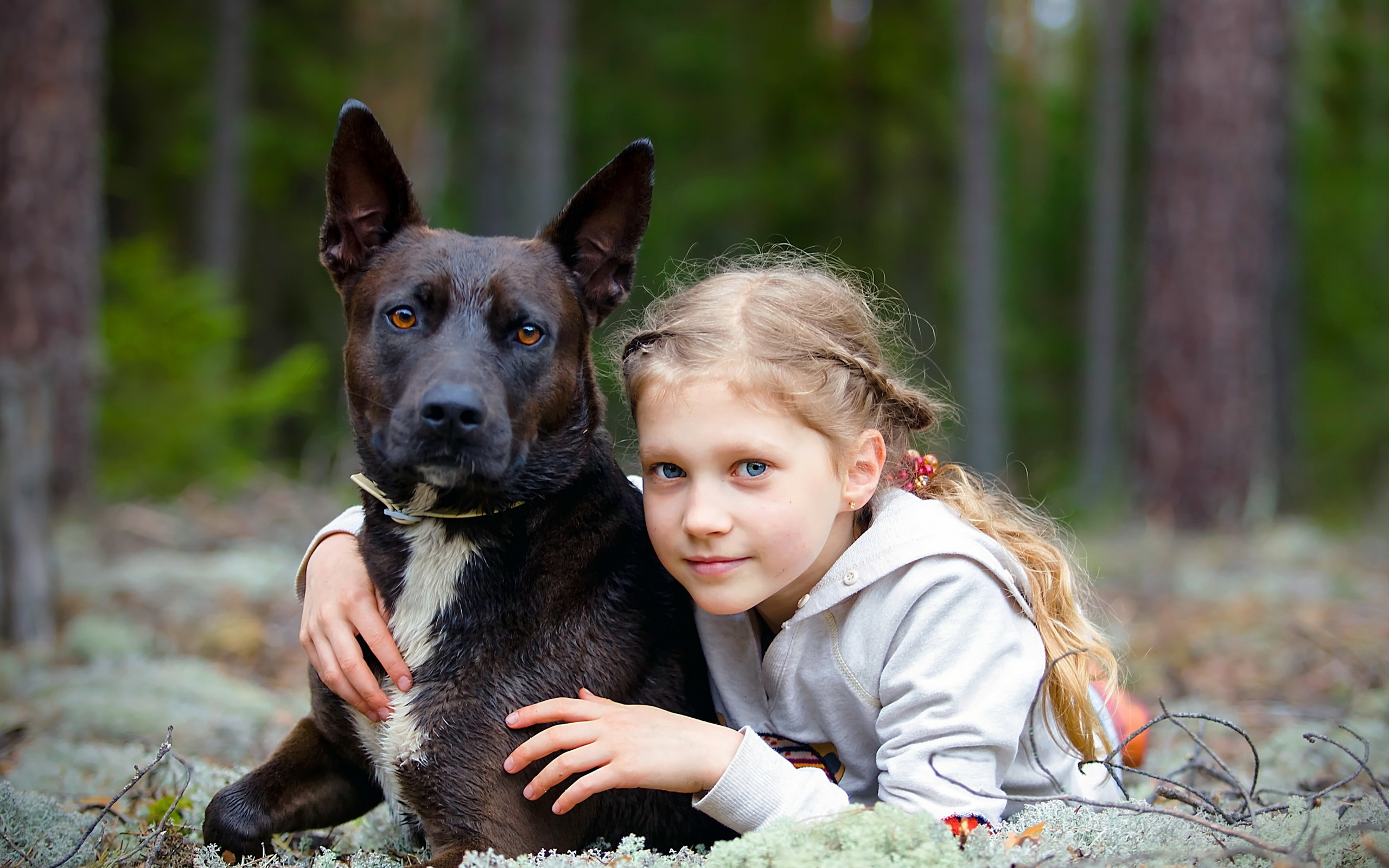 природа животные собака девочка жизнь nature animals dog girl life  № 3951098 бесплатно