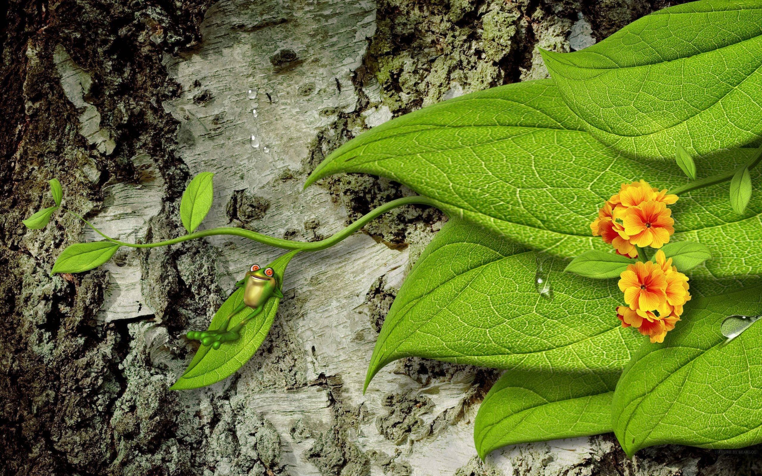 Лягушка листья  № 2931445  скачать