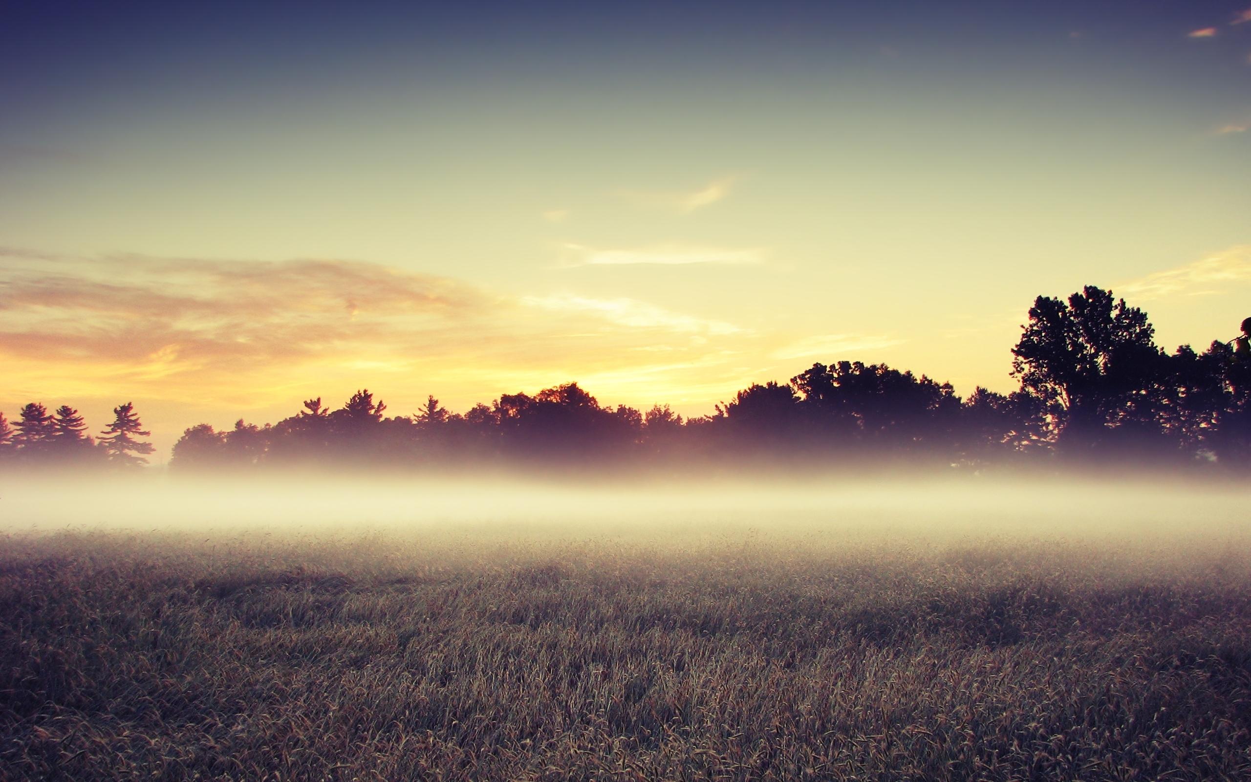 Рассвет утренний туман  № 3795973 без смс