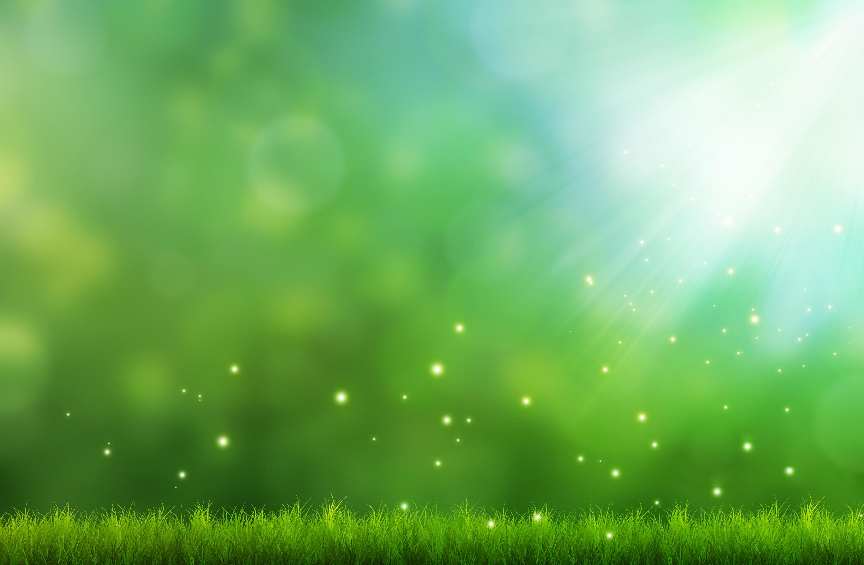 green grass background - HD1920×1256