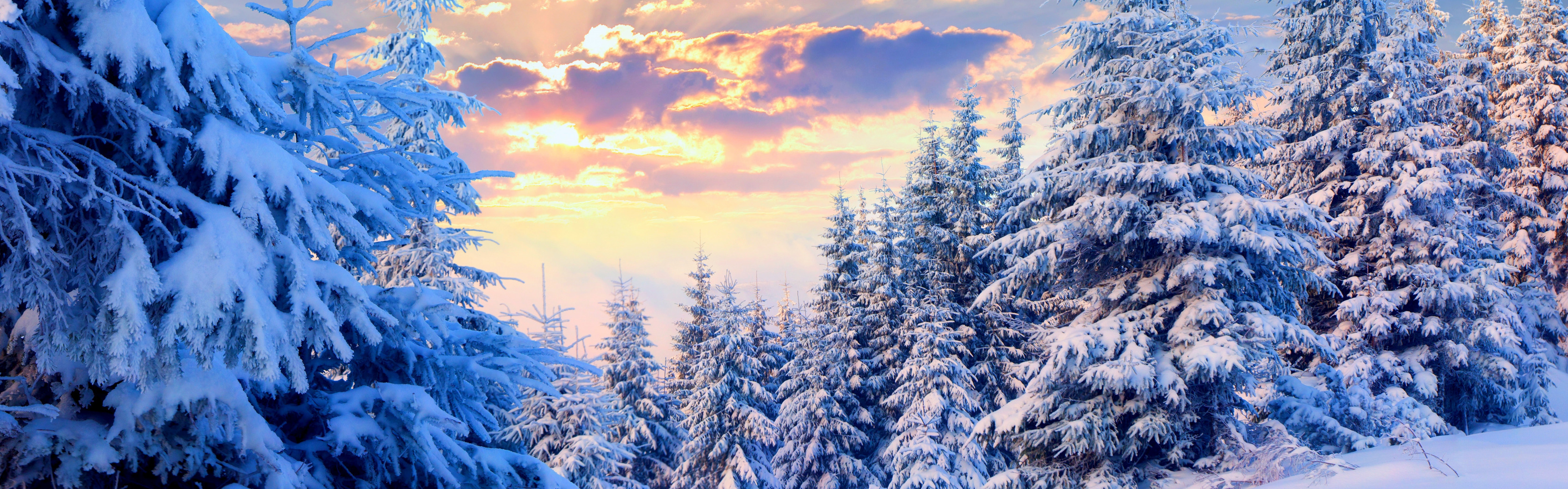 winter landscape desktop background