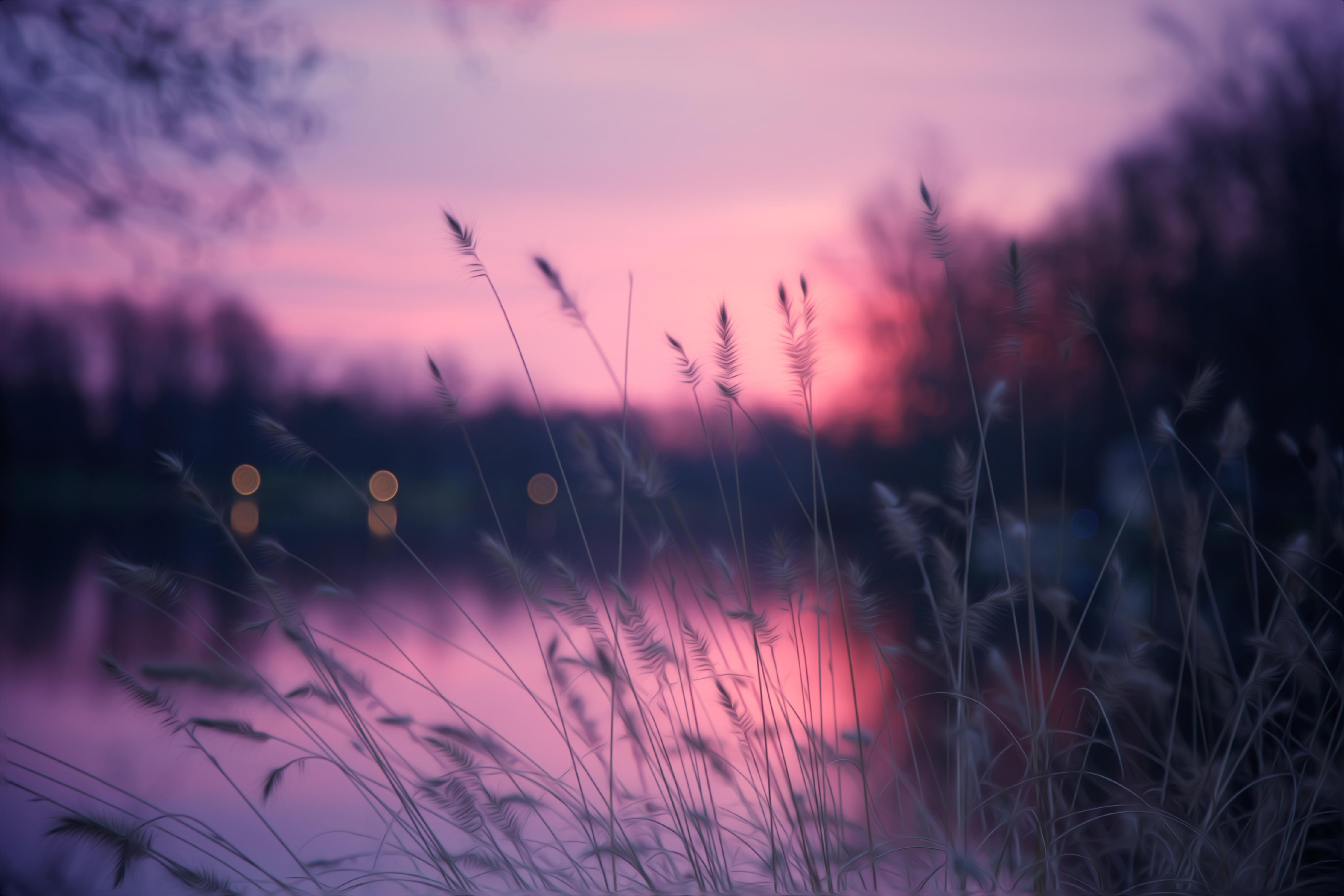 закат озеро небо трава  № 3878825 бесплатно