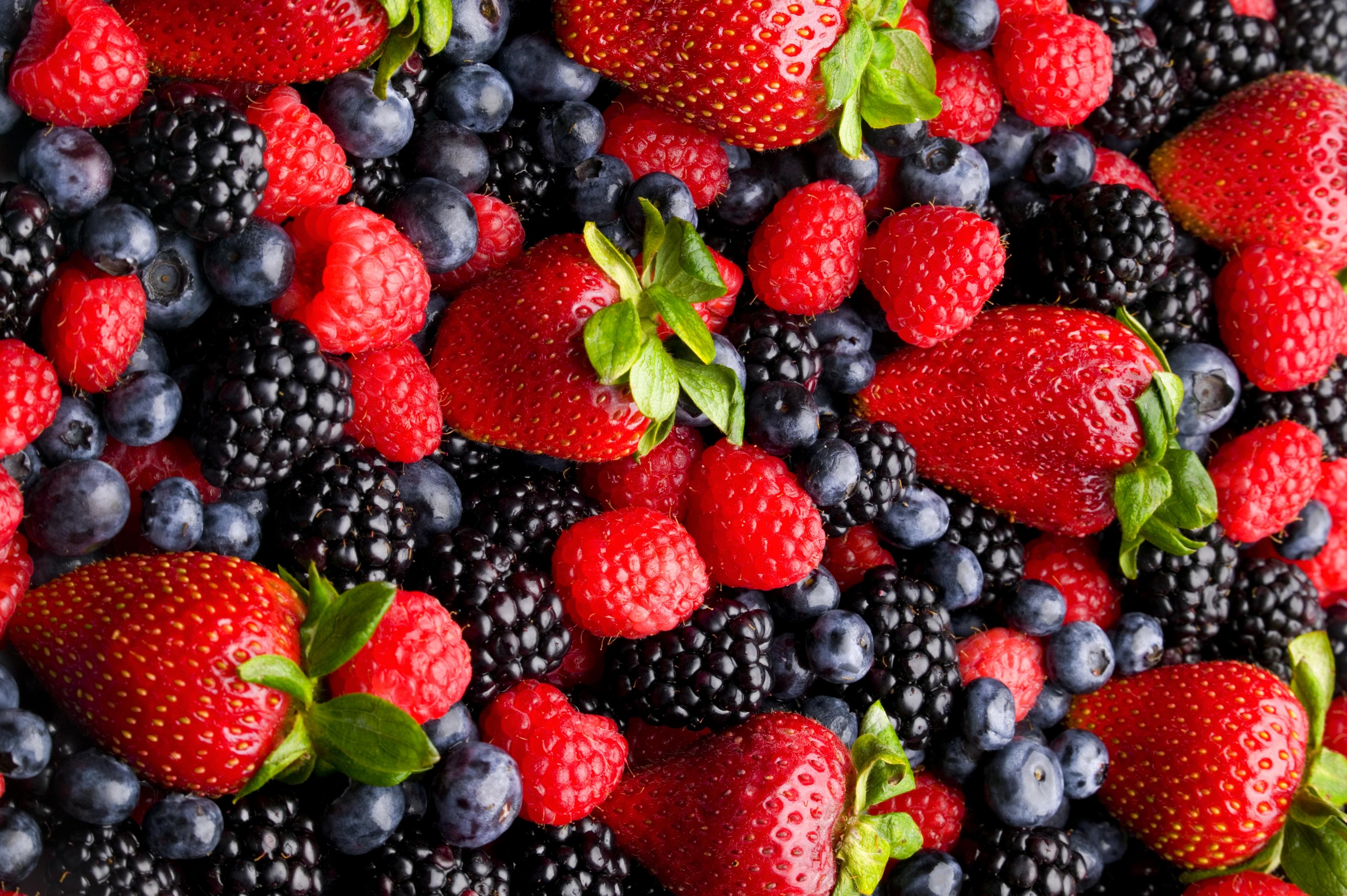 Лесные ягоды  № 2169746 бесплатно