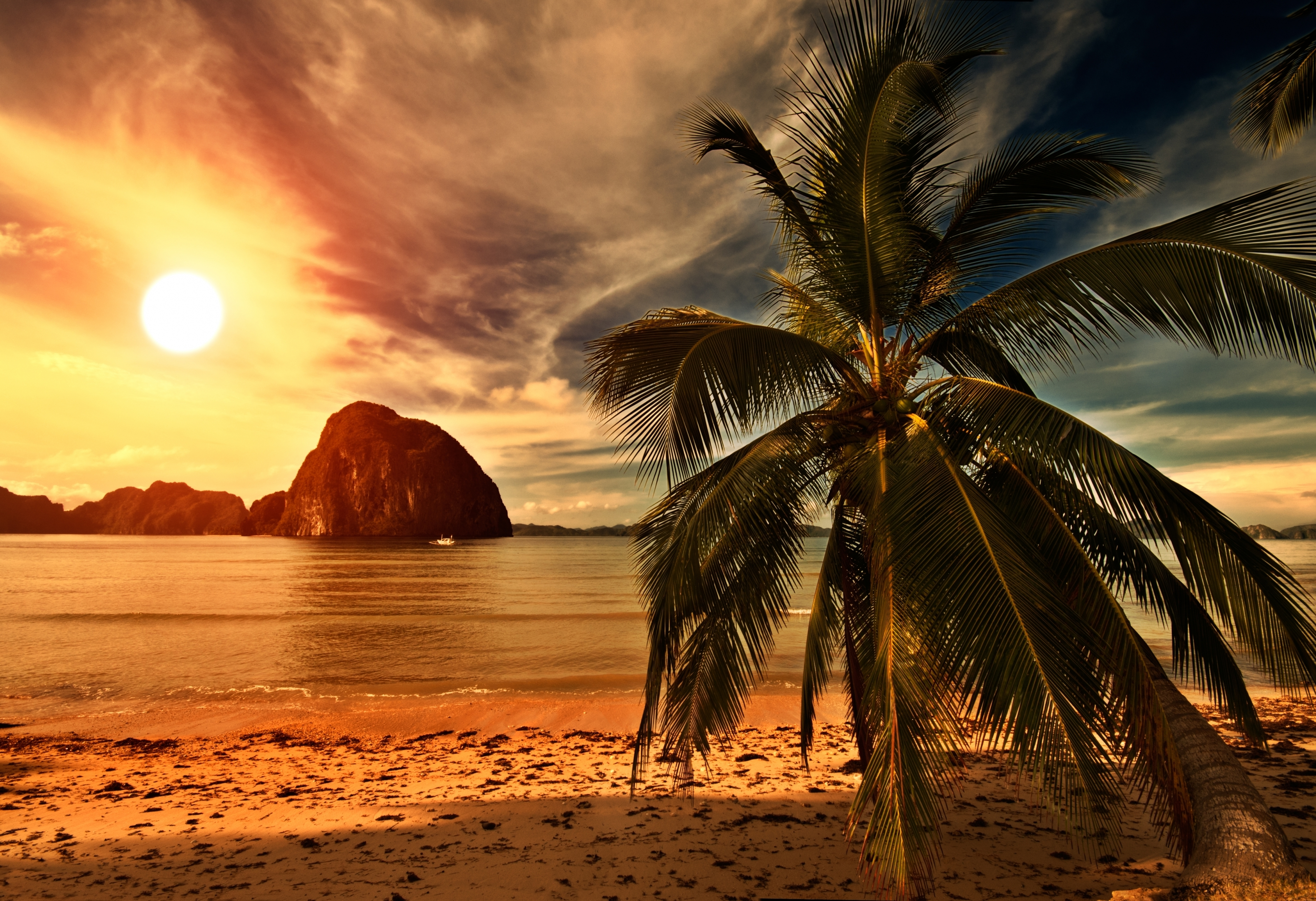beach sunset with palm trees. wallpaper save it beach sunset with palm trees