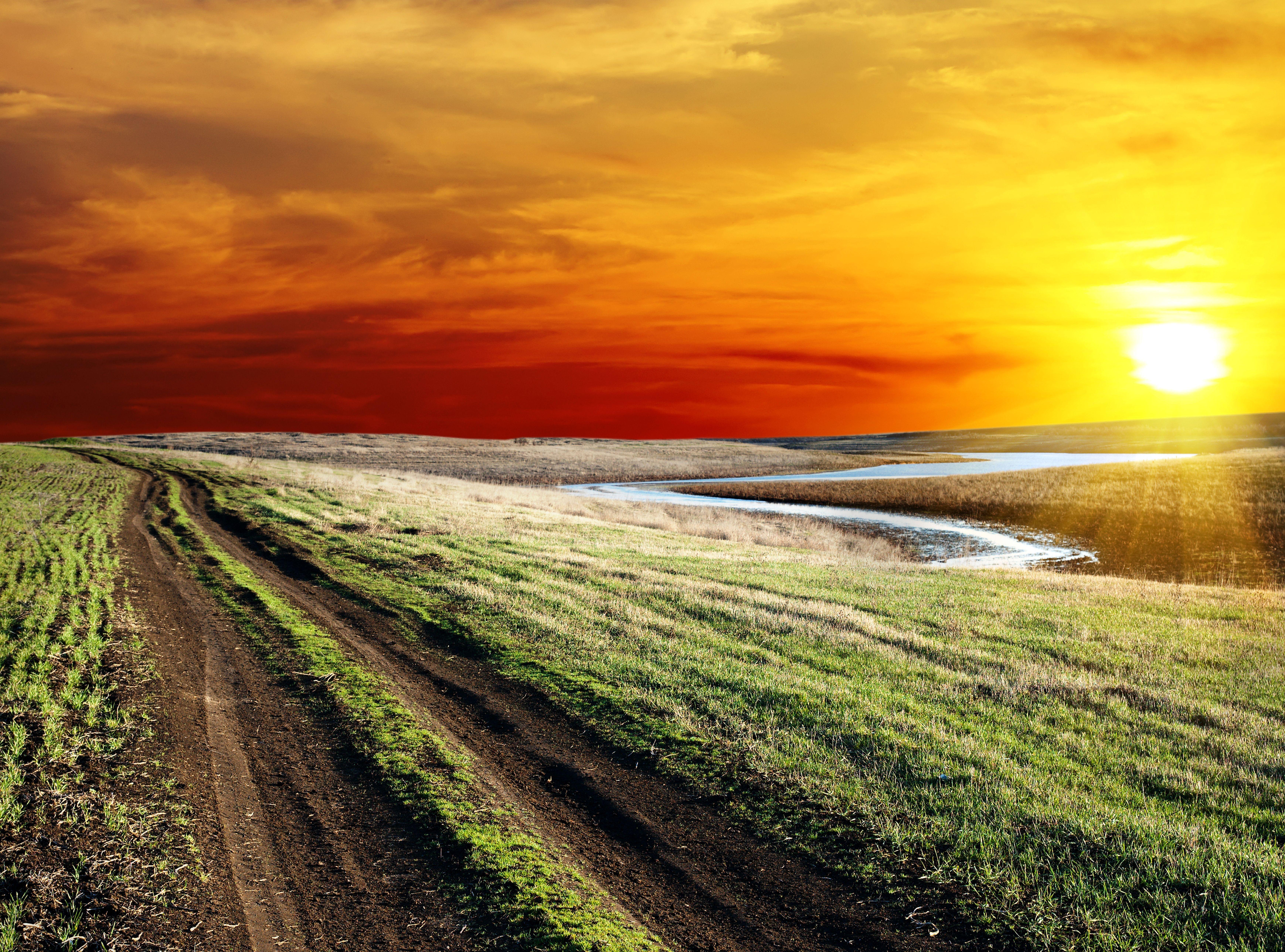 дорога лесостепь солнце  № 786320 бесплатно