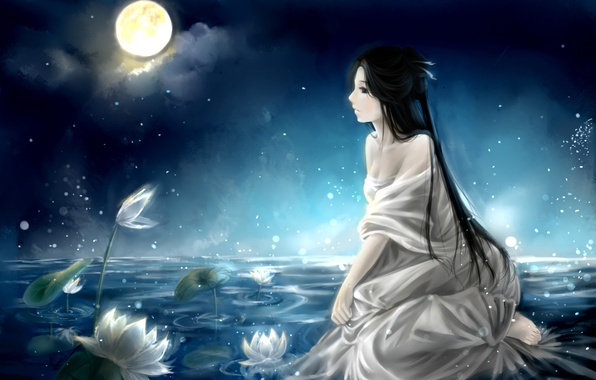 Picture the sky, girl, clouds, night, lake, the moon, anime, art, water lilies, clouble