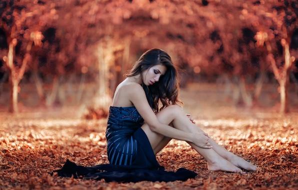 Picture autumn, girl, legs, Sweet Autumn, Alessandro Di Cicco