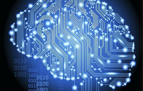 Picture fee, brain, Hi-Tech, Technology
