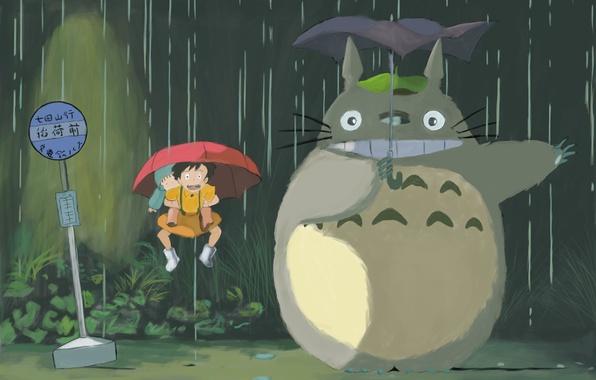 Picture rain, umbrella, Totoro, Hayao Miyazaki
