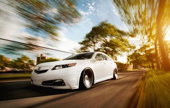 Picture white, honda, Honda, accord, chord, acura, Acura, tsx