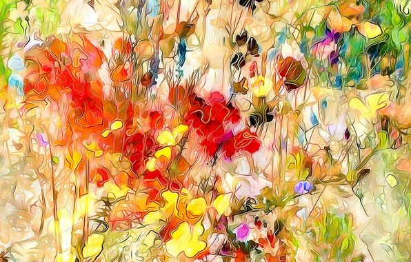 Picture field, flowers, rendering, plant, petals, meadow