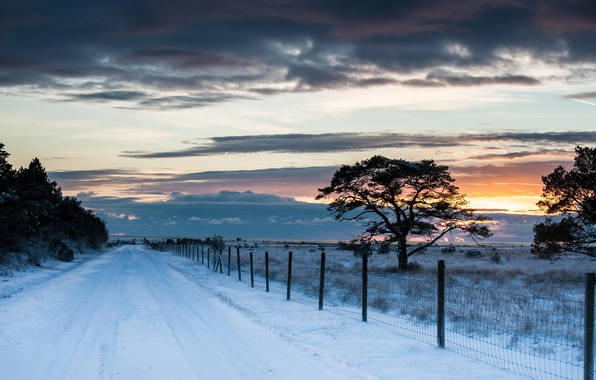 Picture winter, road, field, the sky, snow, trees, landscape, sunset, clouds, nature, the fence, fence