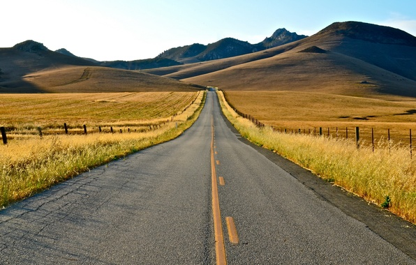 Picture road, summer, landscape