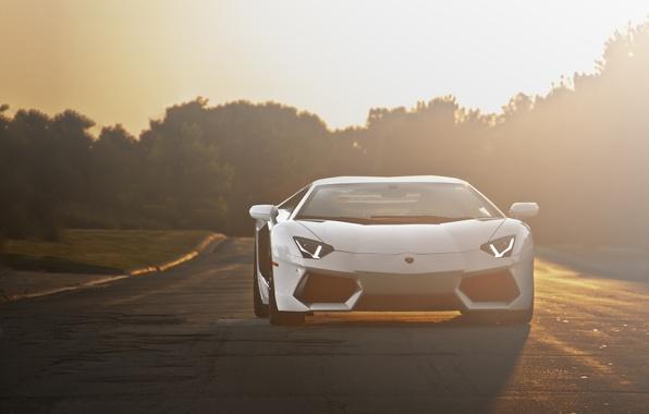 Picture road, white, sunset, white, lamborghini, road, sunset, the front, headlights, aventador, lp700-4, Lamborghini, aventador