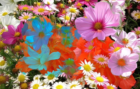Picture line, flowers, abstraction, paint, petals, Daisy, kosmeya