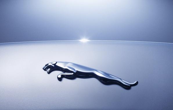 Picture machine, Jaguar, logo