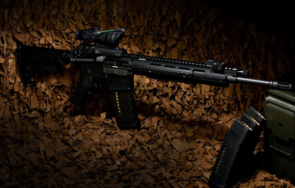 Picture weapons, rifle, carabiner, Ruger, semi-automatic, SR-556E