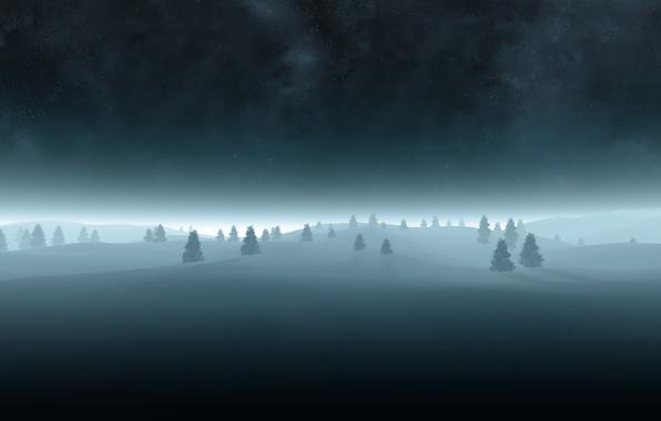 Picture night, tree, tree, Christmas trees, starry sky