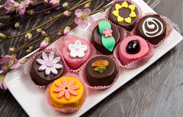 Picture cake, cake, dessert, sweet, chocolate, sweet, dessert