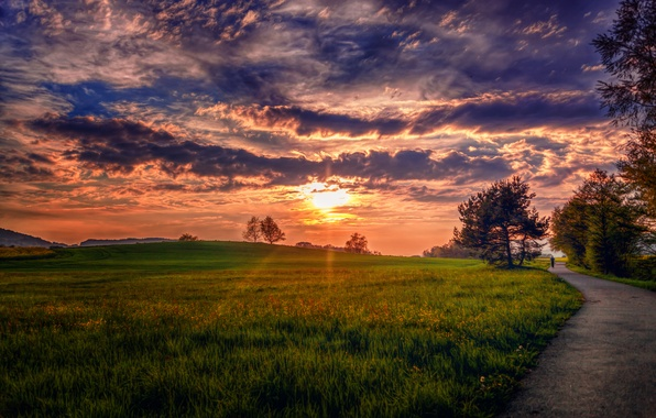 Picture road, the sky, grass, clouds, trees, landscape, nature