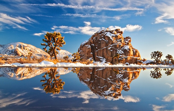 Picture winter, water, snow, trees, nature, stones, tree, landscapes, stone, America