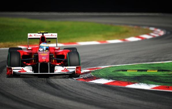 Picture turn, formula 1, ferrari, formula one, fernando alonso, Fernando Alonso