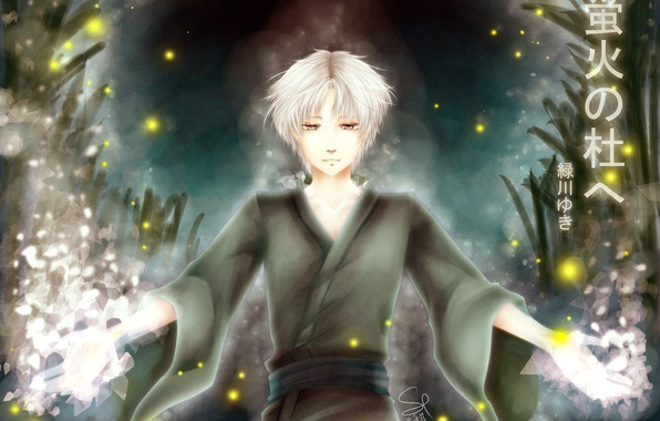Picture fireflies, Ghost, guy, anime, art, in the forest, where fireflies flicker, Gin