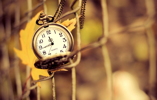 Picture autumn, macro, yellow, nature, time, sheet, mesh, arrows, watch, fence, dial, suspension