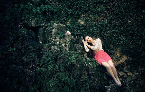 Picture flower, girl, stones, legs