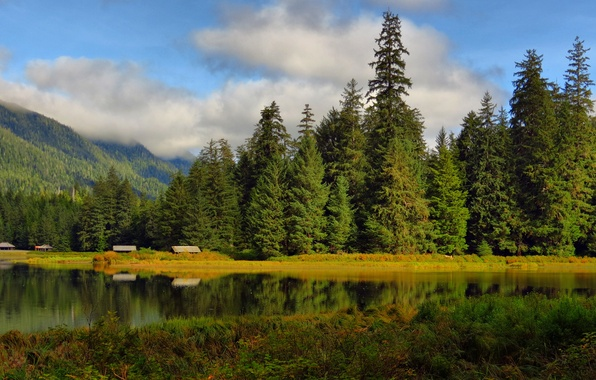 Picture forest, clouds, trees, lake, surface, reflection, hills, home, buildings