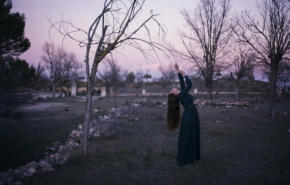 Picture girl, pose, tree, dress, bending