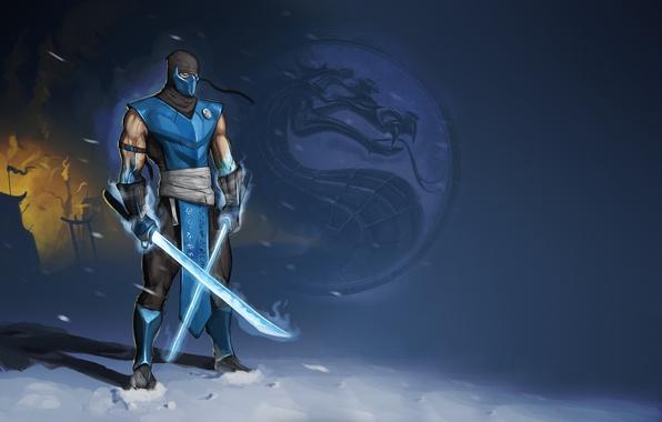 Picture cold, ninja, swords, Mortal Kombat, Sub-Zero, Sub-Zero