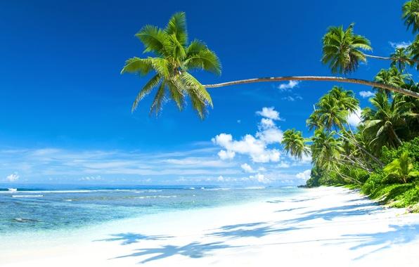 Photo wallpaper sand, sea, beach, the sun, tropics, the ocean, shore, island, summer, beach, sea, ocean, coast, ...