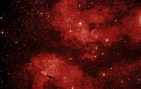 Picture space, nebula, stars, Swan, constellation, LBN 274