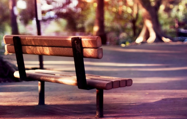 Picture summer, trees, bench, nature, background, stay, widescreen, romance, mood, calm, blur, spring, morning, day, shop, …