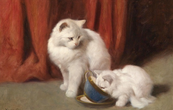 Picture cat, picture, art, white, fluffy, Tea Time, Arthur Heyer