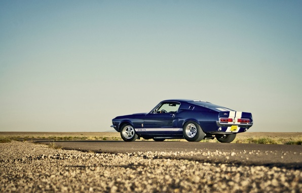Picture road, the sky, desert, Mustang, Ford, Shelby, GT500, horizon, wheel, side, tail light, rear