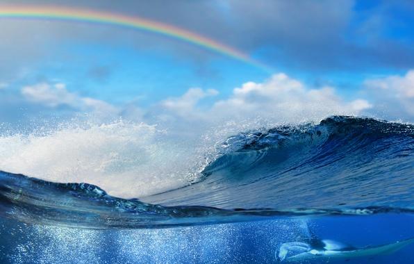 Picture sea, water, the ocean, wave, sky, sea, ocean, blue, splash, wave